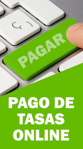 PAGO DE TASAS ONLINE
