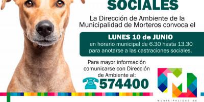 CASTRACIONES SOCIALES DEL MES DE JUNIO