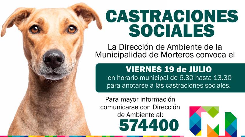 #LaMuniInforma ::: CASTRACIONES SOCIALES