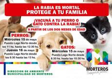Nuevos días de Campaña Antirrábica para tu mascota